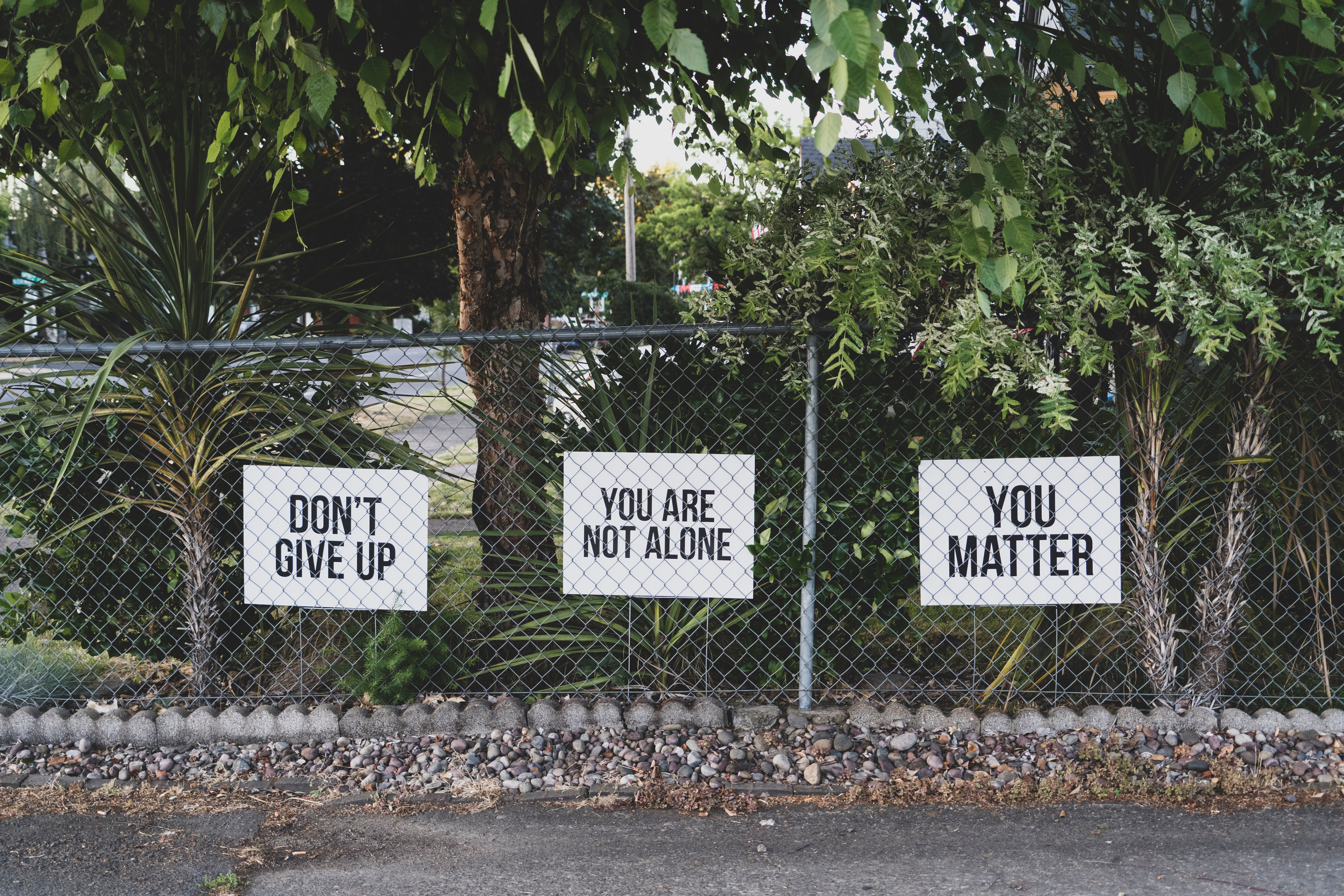 Don't give up, You are not alone, You matter